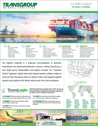 Picture of A TransGroup Overview/Introduction
