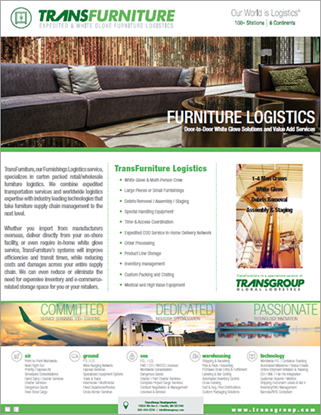 Picture of TransFurniture